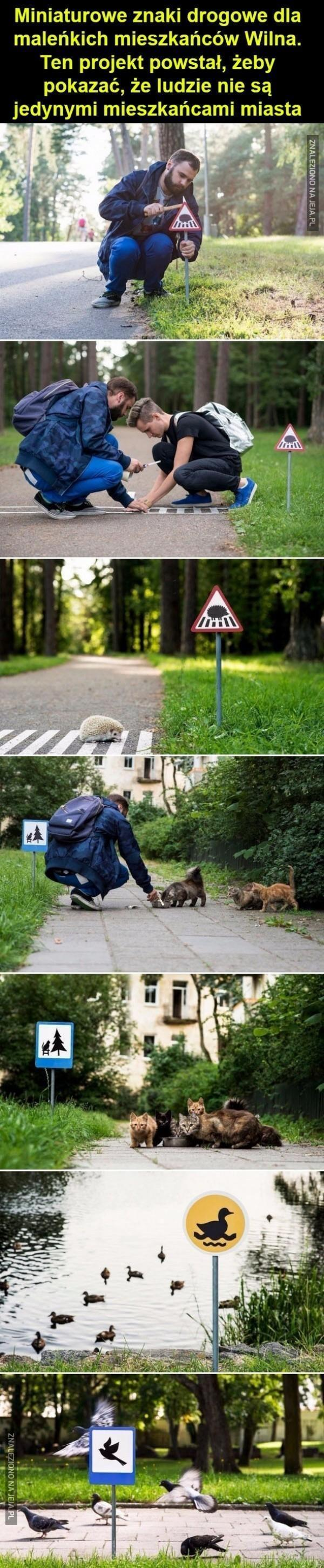 Znaki dla zwierząt