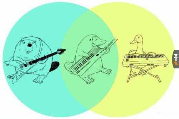 Najlepszy diagram Venna, jaki widziałeś