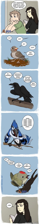 Gdybyśmy rozumieli ptaki