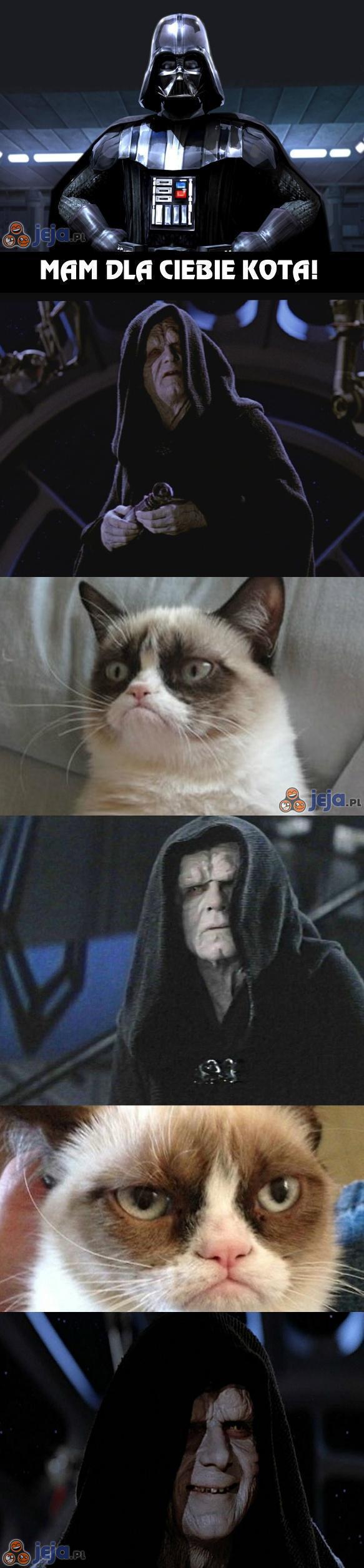 Kot dla Dark Sidiousa