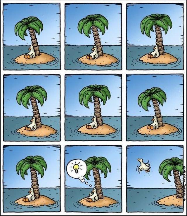 Pomysłowa mewa