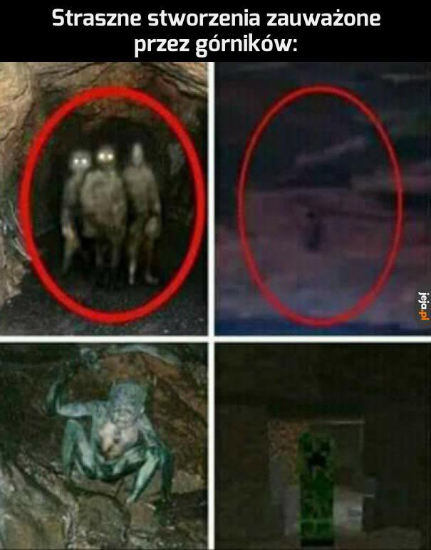 Tajemnicze stwory