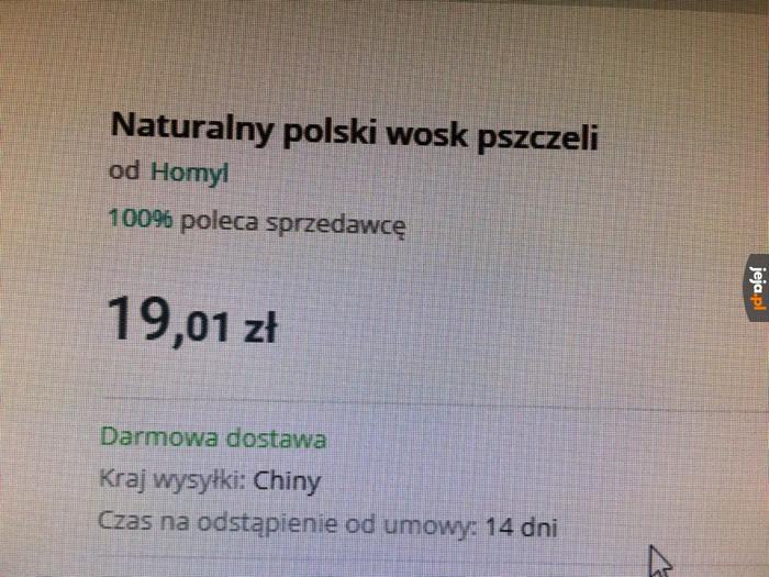 Nawet polskie pszczoły potrafią podrobić