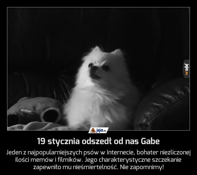 19 stycznia odszedł od nas Gabe