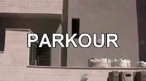 Mistrz parkoura