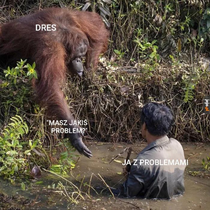 Dobre ziomki zawsze pomogą