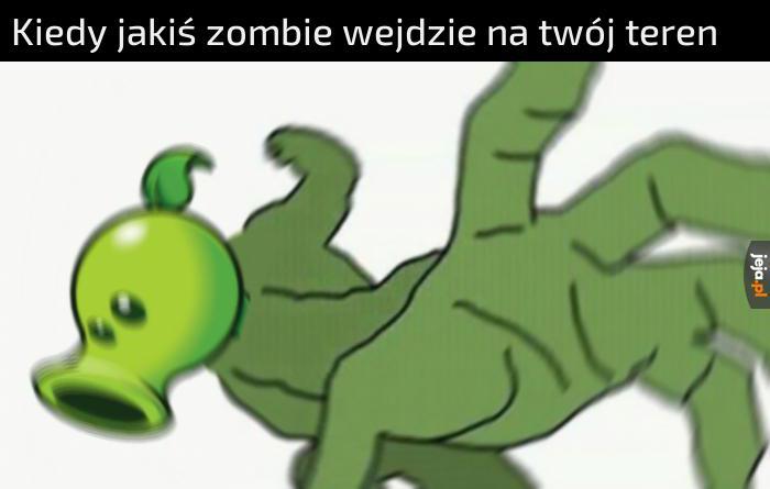 Typowa reakcja rośliny na zombie