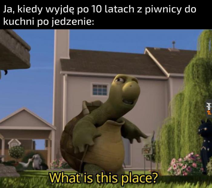 Nie kojarzę tego miejsca