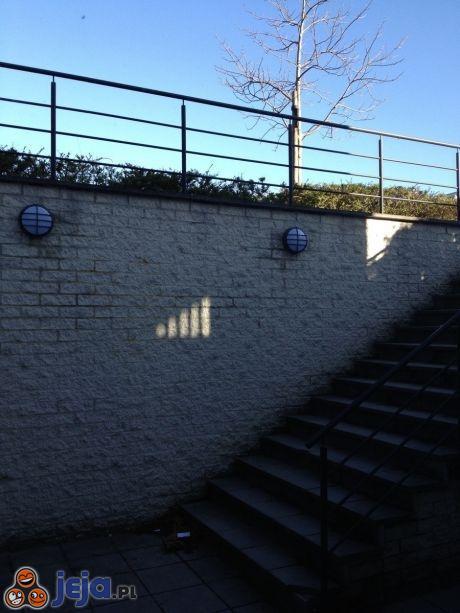Ściana z dostępem do Wi-Fi