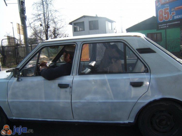 Taxi dla kozy