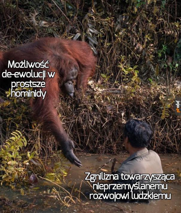 Wróćmy w małpoludy i zróbmy to porządnie