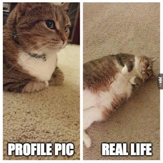 Profilówki vs Rzeczywistość