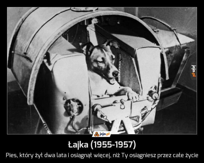 Łajka (1955-1957)
