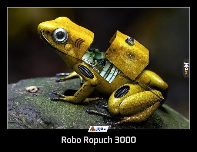 Robo Ropuch 3000