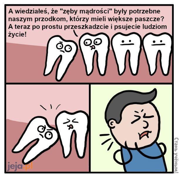 A czy ty już miałeś zęby mądrości?