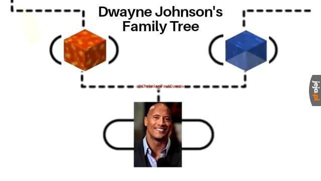 Drzewo rodzinne The Rocka