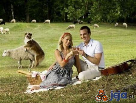 Romantyczny piknik
