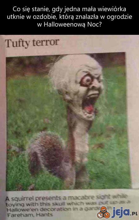 Wiewiórczy terror