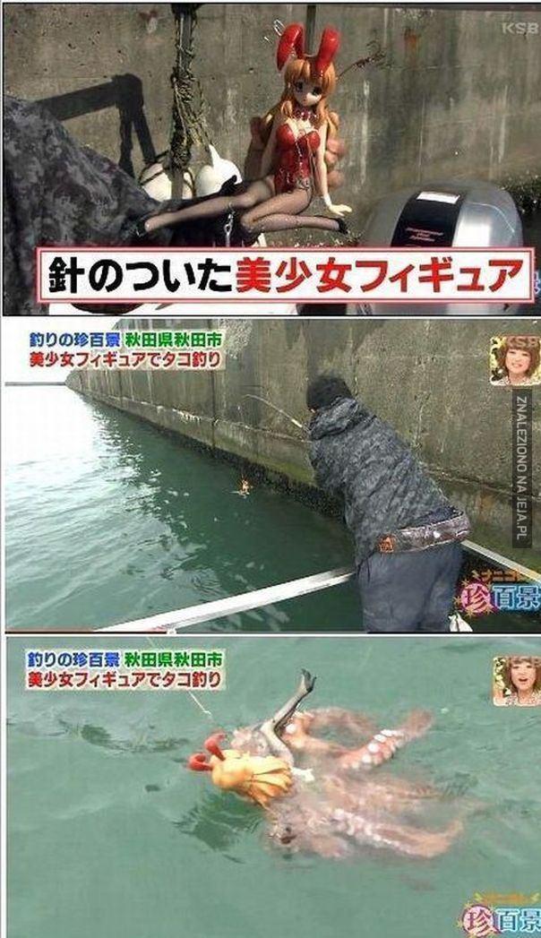 Japończycy polują na ośmiornicę