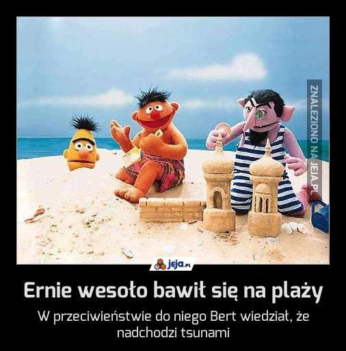 Ernie wesoło bawił się na plaży