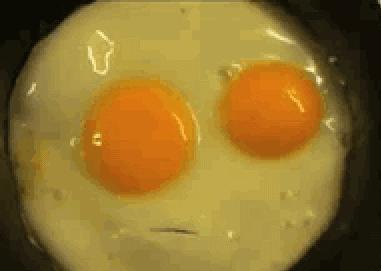 Gadające jajko