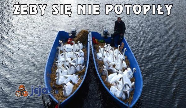 Żeby się nie potopiły