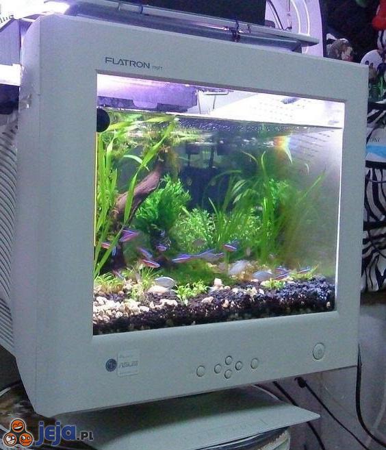 Co zrobić ze starym monitorem?