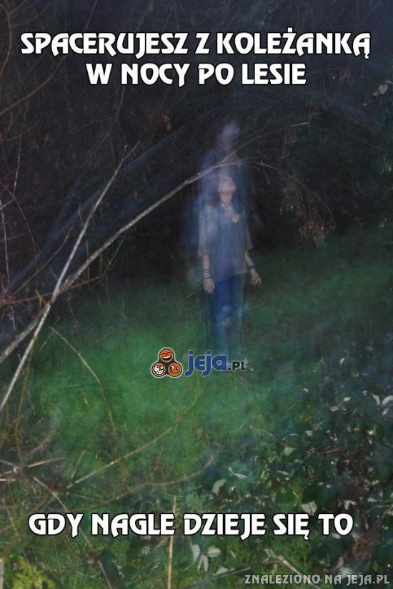 Spacerujesz z koleżanką w nocy po lesie