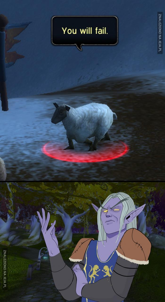 Czo ta owca?