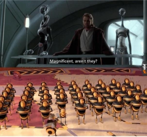 Armia klonów