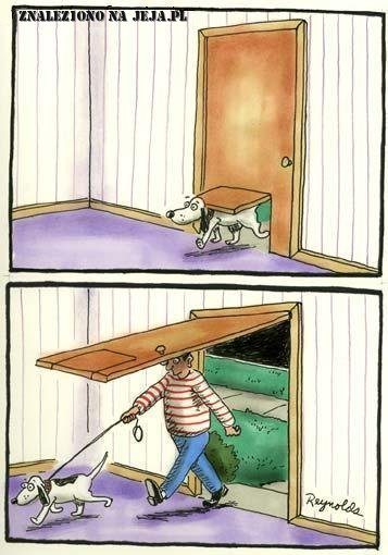 Szybkie drzwi dla psa