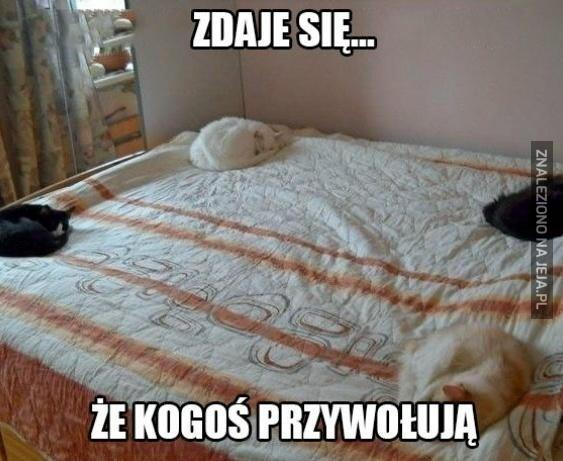 Rytuał w moim łóżku
