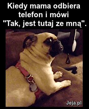 Kiedy mama odbiera telefon...