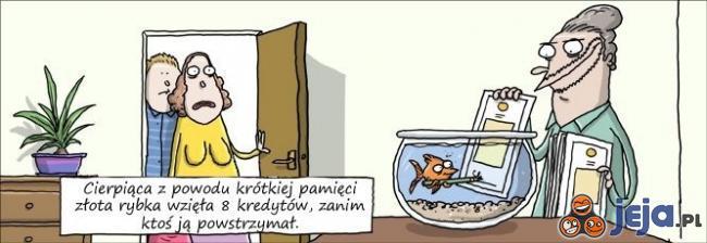 Trudne życie złotej rybki