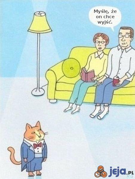 Kot chce wyjść