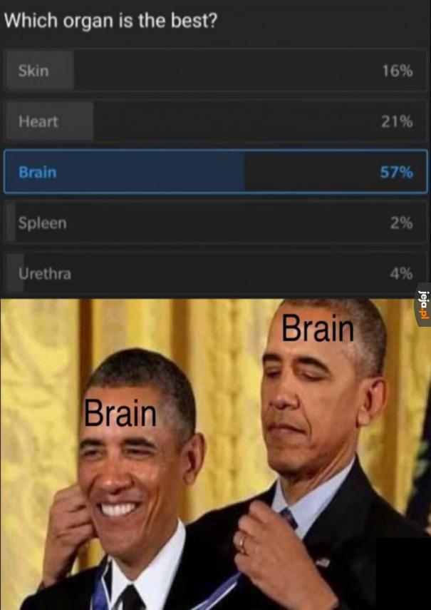 Najlepszy spośród organów
