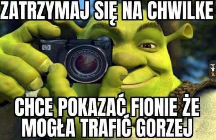 To nie było miłe, Shreku!