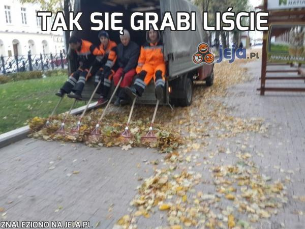 Tak się grabi liście