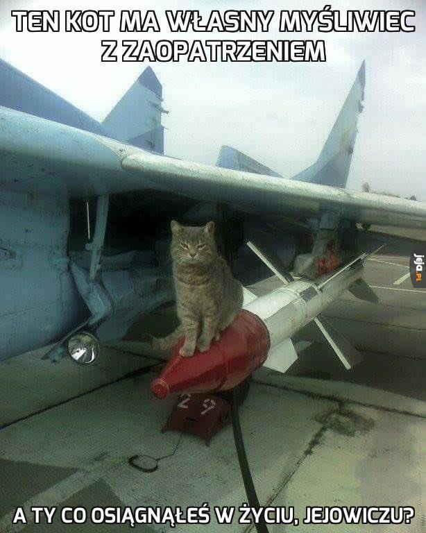 Kotek nie próżnował