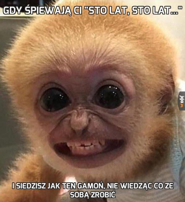 Gdy śpiewają Ci Sto lat, sto lat - Jeja.pl