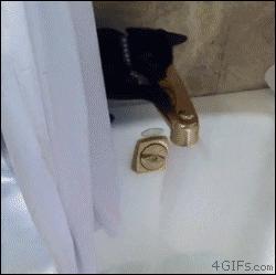 Niespodziewana kąpiel