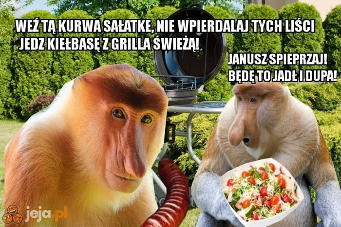 Wegetarianin Vs Janusz Na Grillu Jejapl
