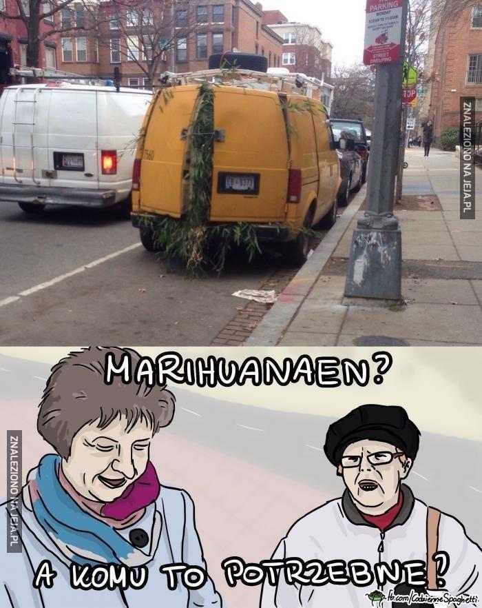 Panie, a daj pan spokój! Tyle marihuanaen?
