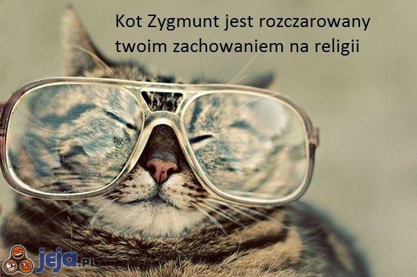 Kot Zygmunt jest rozczarowany