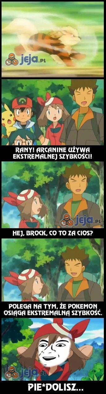Rajciu, Brock, jesteś geniuszem!