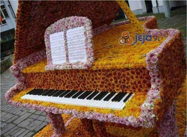Fortepian florysty
