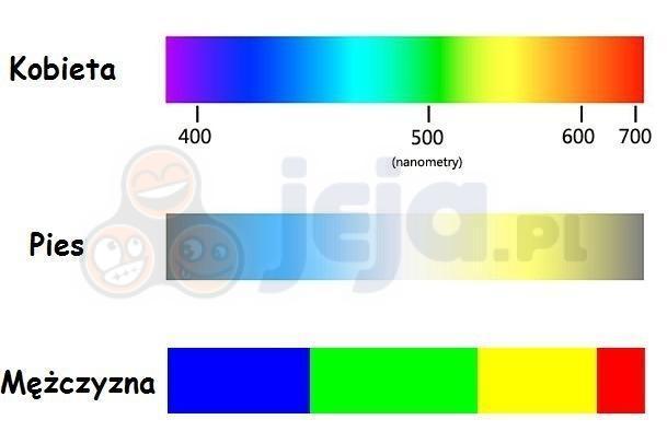 Jak dzielimy kolory?