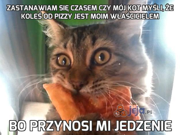 Koty Memy Jedzenie