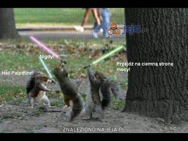 Wiewiórki Jedi