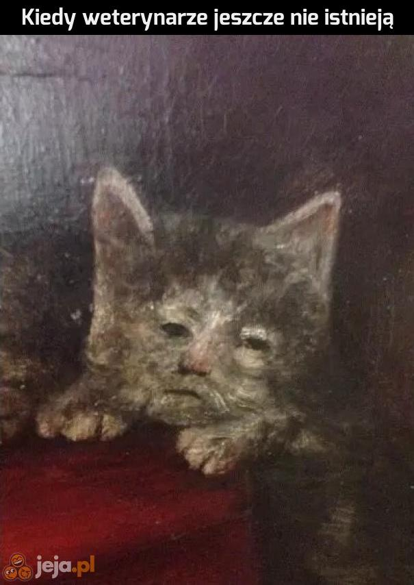 Kto ratował kiedyś kotki?